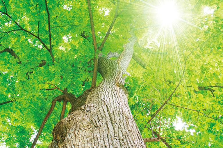 品質と環境への配慮